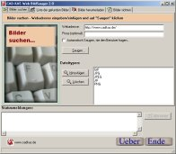 A screenshot of the program Web ImageGrabber 2.1 - Get all pics, mp3s...